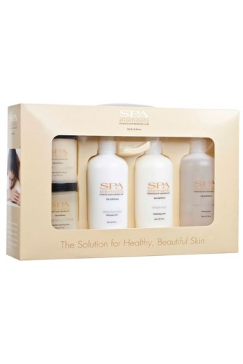 EzFlow Spa Elements Professional Kit